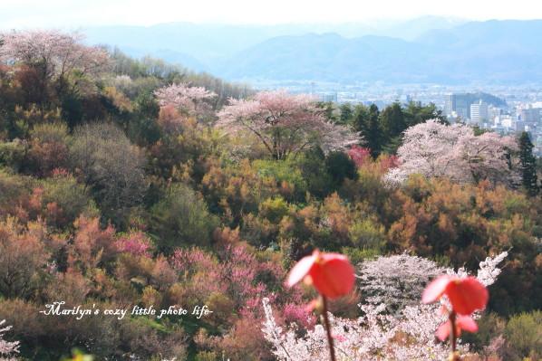 fukushima_1.jpg