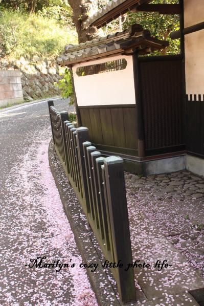 kamakurayama_1.jpg