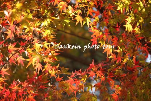 photo tour 11_1.jpg