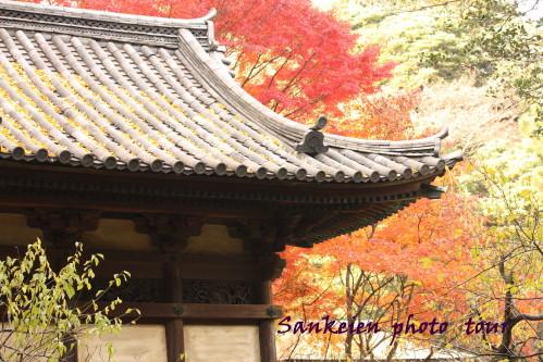 photo tour3_1.jpg